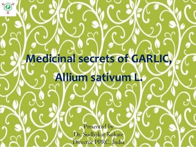 Medicinal secrets of GARLIC, Allium sativum L. Presented by Dr. Sudhakar Kokate Director PPRC, India