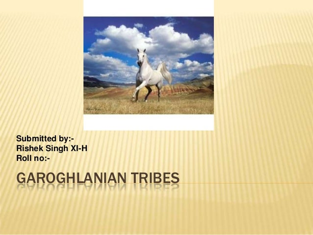 Submitted by:Rishek Singh XI-H Roll no:-  GAROGHLANIAN TRIBES