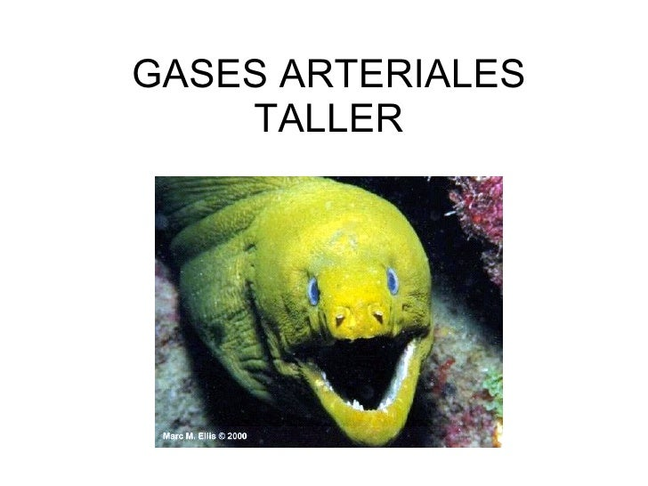 GASES ARTERIALES TALLER