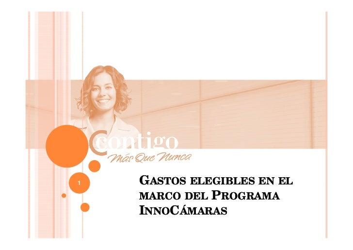 1   GASTOS ELEGIBLES EN EL    MARCO DEL PROGRAMA    INNOCÁMARAS
