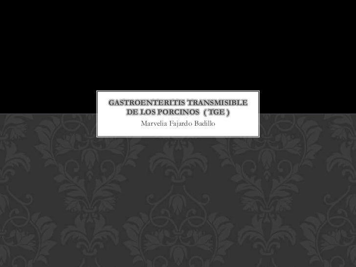 GASTROENTERITIS TRANSMISIBLE    DE LOS PORCINOS ( TGE )       Marvelia Fajardo Badillo