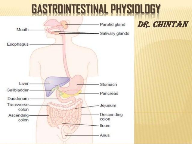 GASTROINTESTINAL PHYSIOLOGY - Dr. Chintan