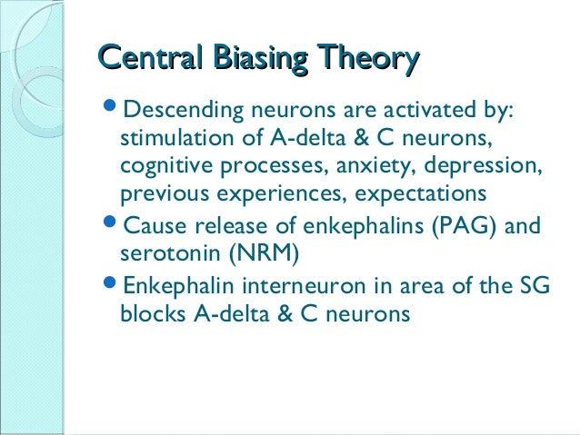 neuromatrix theory of pain pdf
