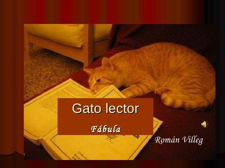 Gato lector Fábula Román Villeg