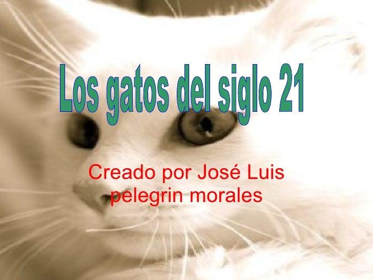 Creado por José Luis pelegrin morales Los gatos del siglo 21