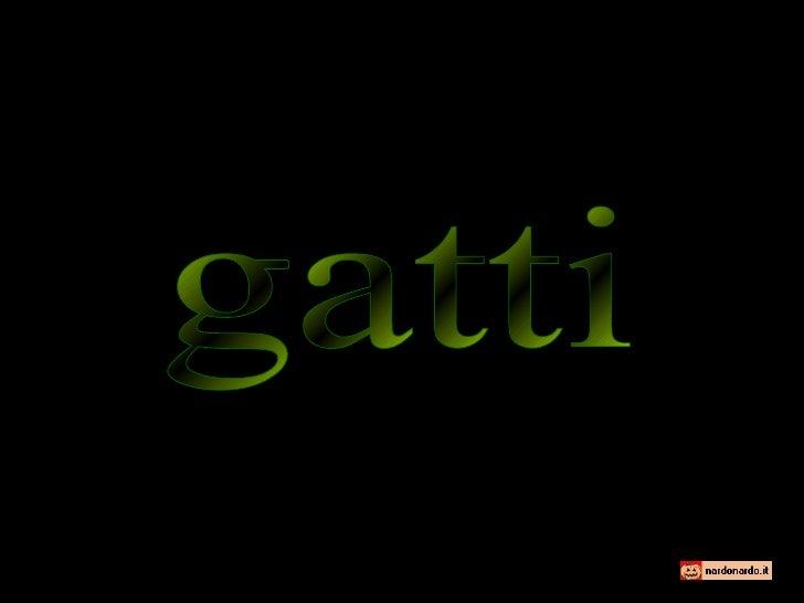 Gatti 090624135127-phpapp02
