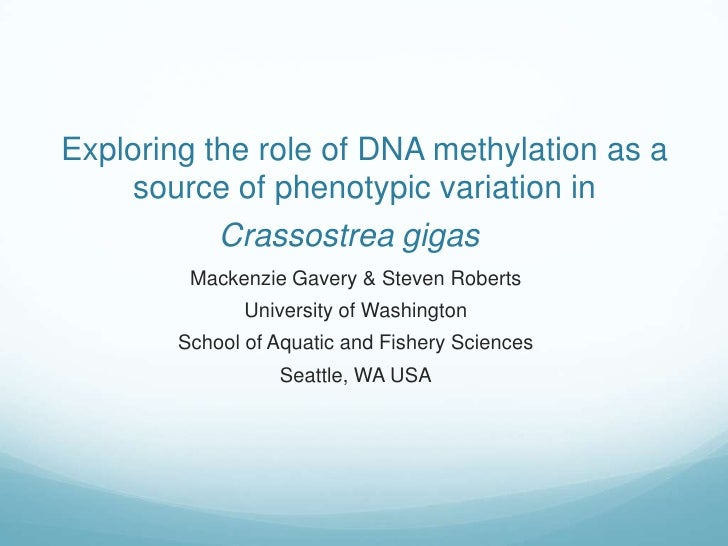 Exploring the role of DNA methylation as a source of phenotypic variation in Crassostrea gigas<br />Mackenzie Gavery & Ste...