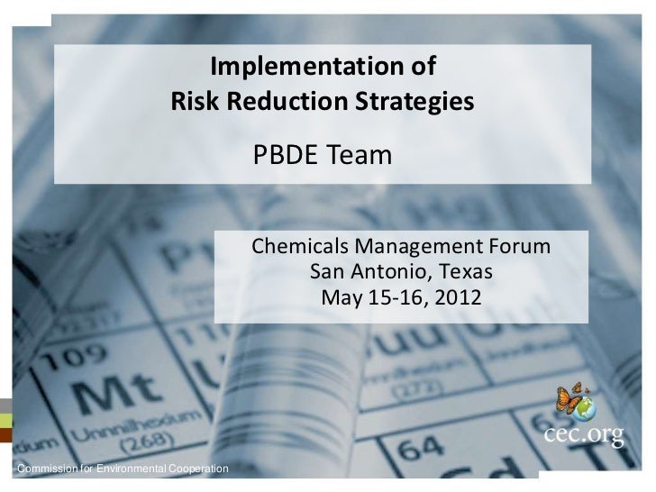 Implementation of Risk Reduction Strategies for PBDEs