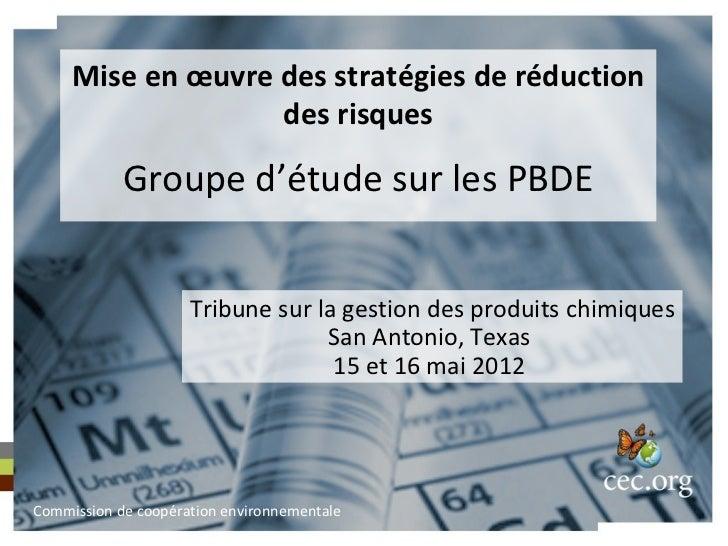 Mise en œuvre des stratégies de réduction                   des risques            Groupe d'étude sur les PBDE            ...
