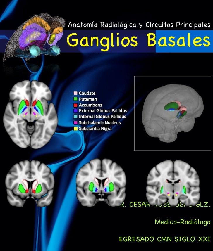 Anatomía Radiológica y Circuitos PrincipalesGanglios Basales              DR. CESAR ROSENBERG GLZ.                        ...