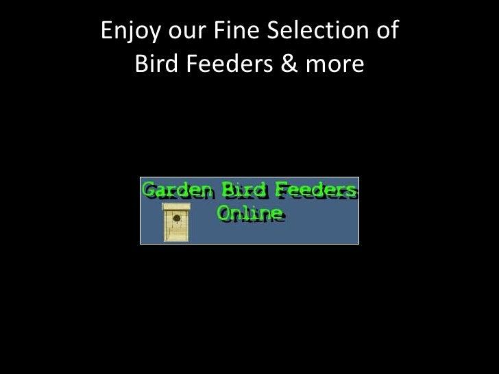 Enjoy our Fine Selection ofBird Feeders & more<br />