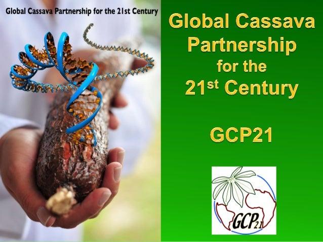 A Global Alliance For the Improvement of Cassava - GCP21
