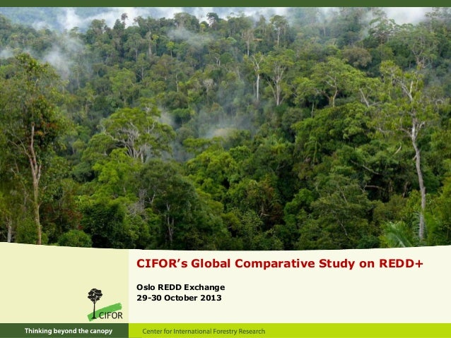 Global Comparative Study on REDD+ - The Project and Results