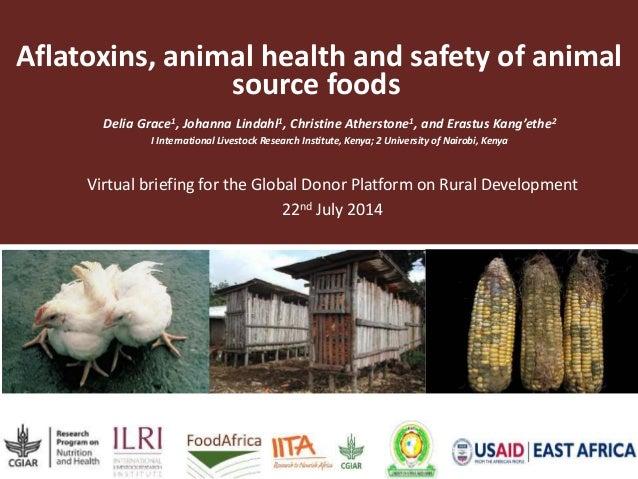 Aflatoxins, animal health and safety of animal  source foods  Delia Grace1, Johanna Lindahl1, Christine Atherstone1, and E...