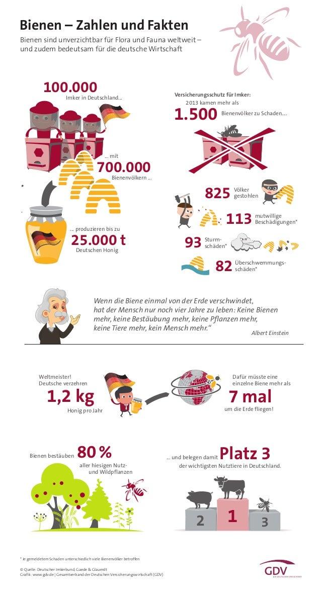 Bienen – Zahlen und Fakten © Quelle: Deutscher Imkerbund, Gaede & Glauerdt Grafik: www.gdv.de | Gesamtverband der Deutsche...