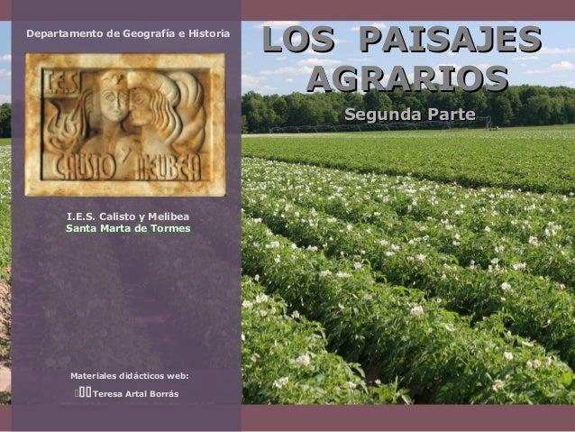 Departamento de Geografía e Historia  LOS PAISAJES AGRARIOS Segunda Parte  I.E.S. Calisto y Melibea Santa Marta de Tormes ...