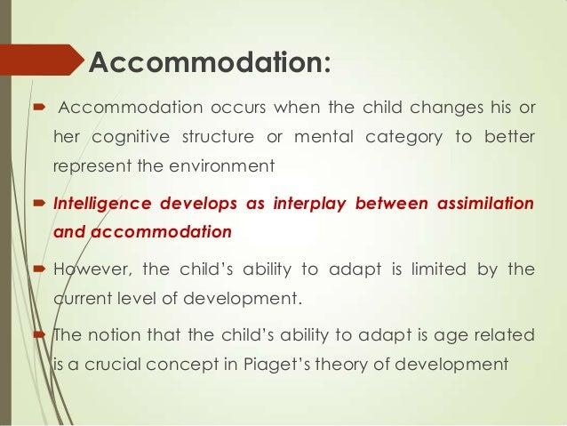 accommodation assimilation adult example