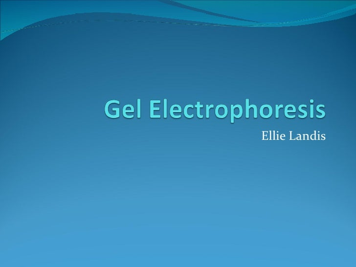 Gel electrophoresis power point may 23