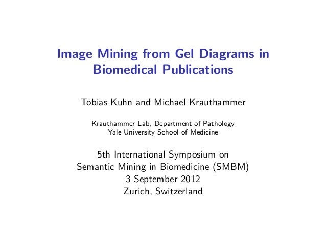 Image Mining from Gel Diagrams in Biomedical Publications Tobias Kuhn and Michael Krauthammer Krauthammer Lab, Department ...