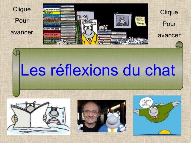 Les réflexions du chat Clique Pour avancer Clique Pour avancer