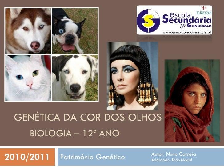 GENÉTICA DA COR DOS OLHOS      BIOLOGIA – 12º ANO                                Autor: Nuno Correia2010/2011 Património G...