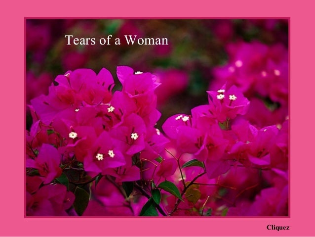 Tears of a Woman                   Cliquez