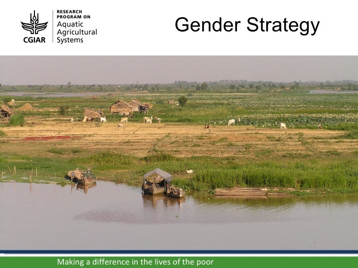 Gender strategy (paris 14 june 2012)