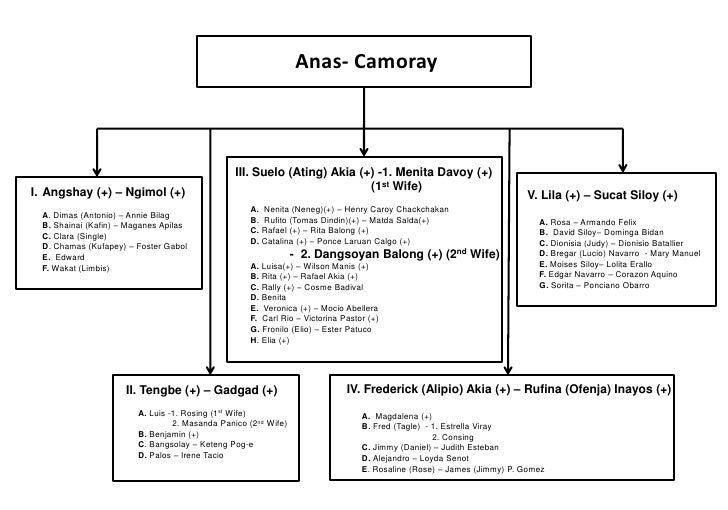 Anas- Camoray<br />IV. Frederick (Alipio) Akia (+) – Rufina (Ofenja) Inayos(+)<br />A.  Magdalena (+)<br />B. Fred (Tagle)...