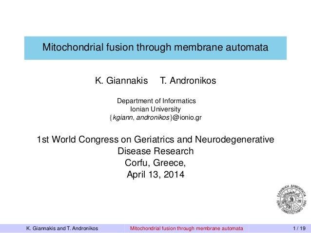Mitochondrial Fusion Through Membrane Automata