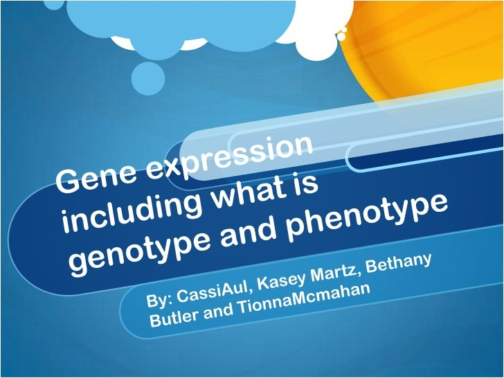 Gene expression including what is genotype and phenotype<br />By: CassiAul, Kasey Martz, Bethany Butler and TionnaMcmahan<...