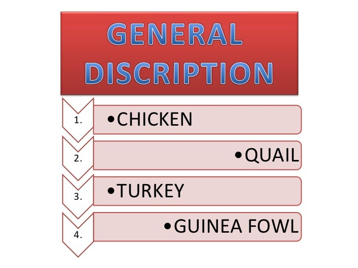 General discription of poultry