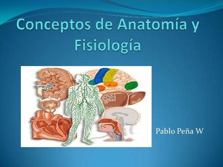 Conceptos de Anatomía y Fisiología <br />Pablo Peña W<br />