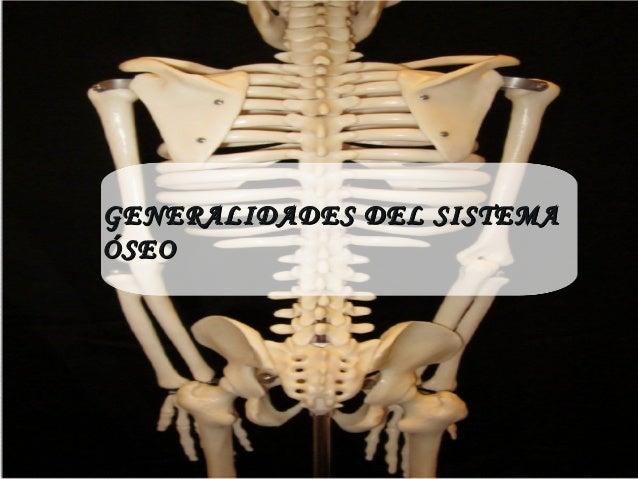 GENERALIDADES DEL SISTEMAGENERALIDADES DEL SISTEMA ÓSEOÓSEO