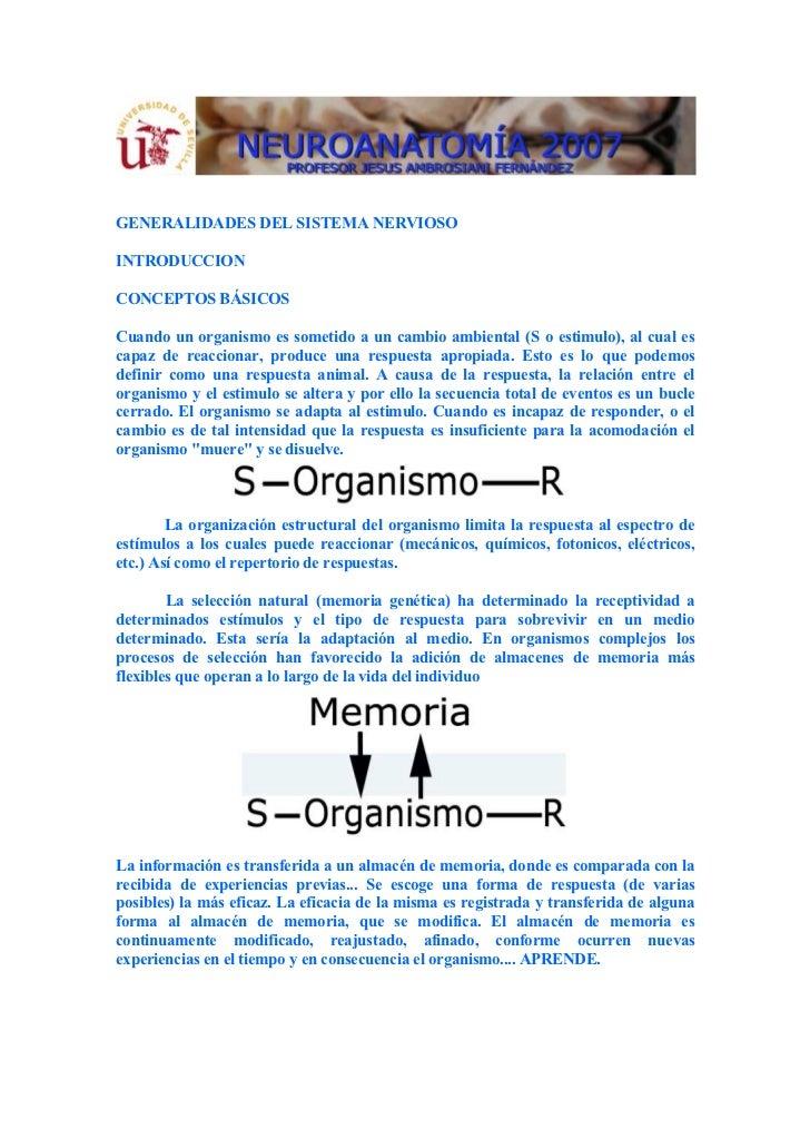 GENERALIDADES DEL SISTEMA NERVIOSOINTRODUCCIONCONCEPTOS BÁSICOSCuando un organismo es sometido a un cambio ambiental (S o ...