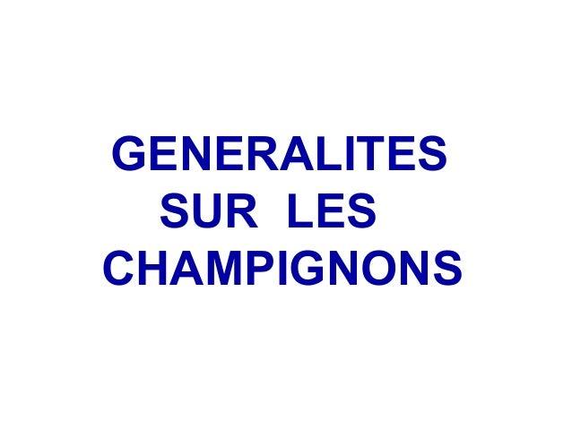 GENERALITES  SUR LESCHAMPIGNONS