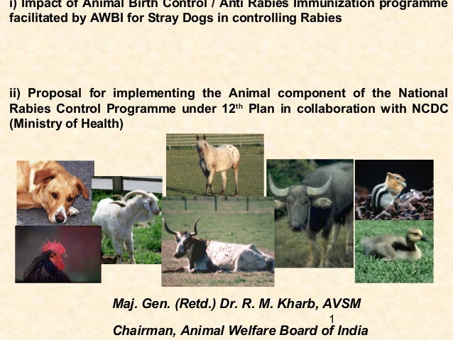 NDWC Chennai 2013 - Animal Welfare Board of India's role in ABC and Rabies Eradication - Major General Kharb