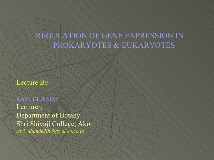 gene expression in eukaryotes Introduction initiation of transcription is the most important step in gene expression without the initiation of transcription, and the subsequent transcription of the gene into mrna by rna polymerase, the phenotype controlled by the gene will not be seen.