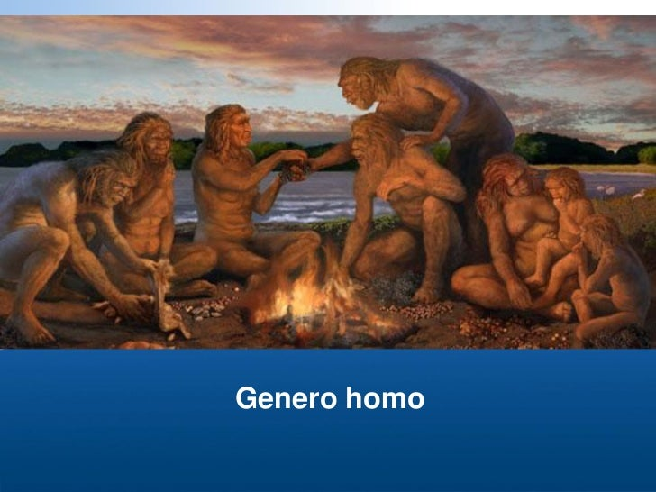 Genero homo2