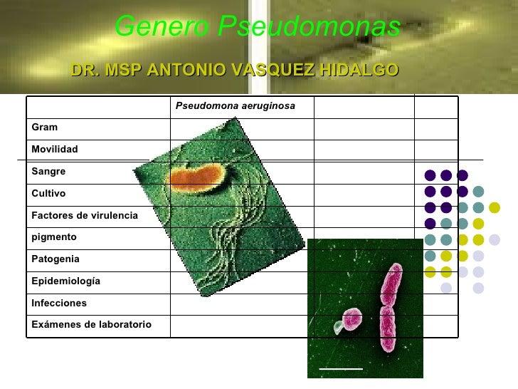 Genero Pseudomonas DR. MSP ANTONIO VASQUEZ HIDALGO Movilidad Exámenes de laboratorio Infecciones Epidemiología Patogenia p...