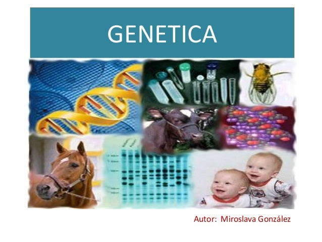 GENETICA      Autor: Miroslava González