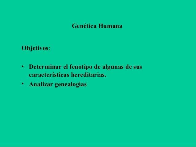 Genética Humana Objetivos: • Determinar el fenotipo de algunas de sus características hereditarias. • Analizar genealogías