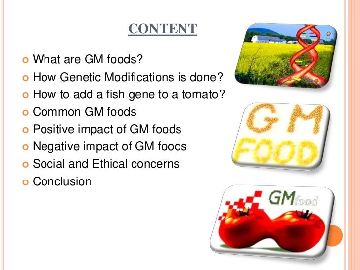 the negative impact of genetically modified