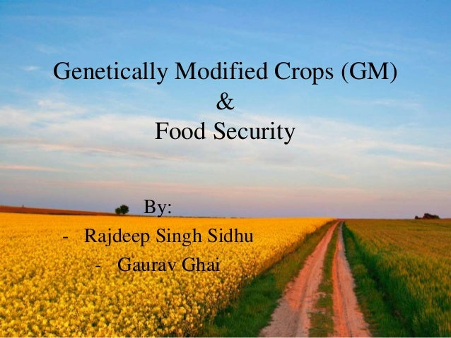 Genetically Modified Crops (GM) & Food Security By: - Rajdeep Singh Sidhu - Gaurav Ghai