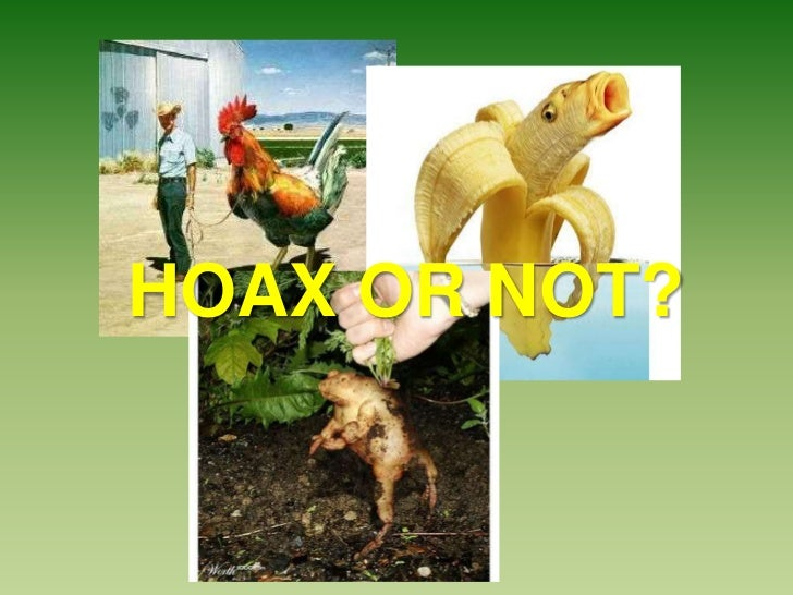 HOAX OR NOT?
