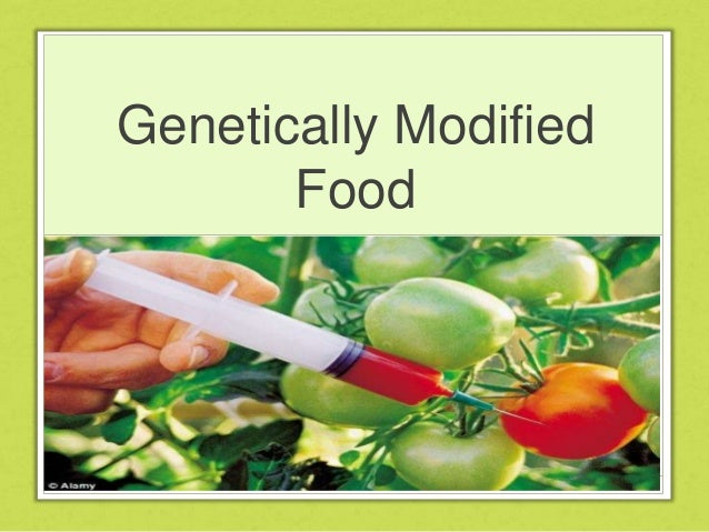 Genetically Modified Foods Essay