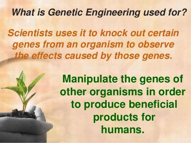 What is genetic engineering?! HELP!?