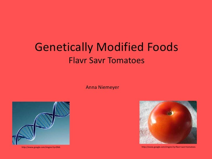 Genetically Modified Foods                                     Flavr Savr Tomatoes                                        ...