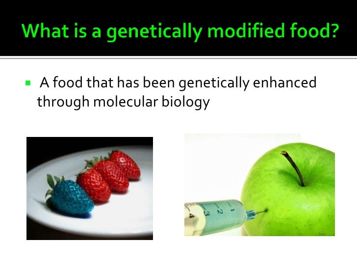 outline for genetically modified food