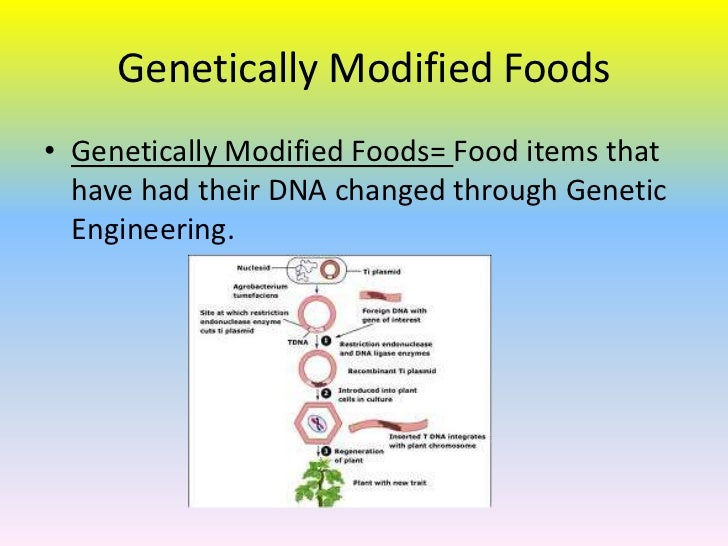 genetically modified foods 14 essay Web essay: label genetically modified foods there is no reason to deny consumers the right to know whether a product contains gmos march 14, 2018, 9:16 pm.