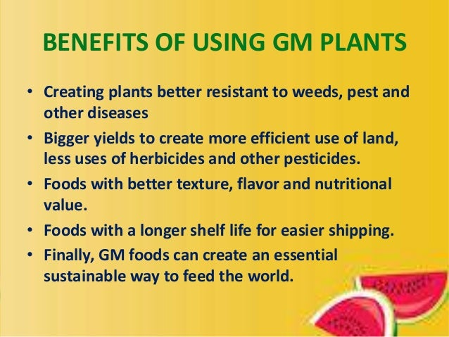 benefits of genetically modified organisms essay According to webmd, possible disadvantages of genetically modified crops include environmental hazards such as the creation of herbicide-resistant weeds, altering the nutritional content of food, resistance of crops to antibiotics, the presence of toxins and allergens and the risk of contamination.